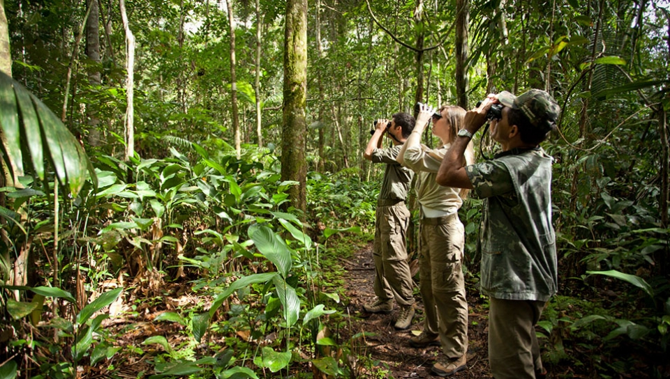Observing wildlife with the help of guides - Photo by Samuel Melim