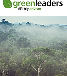 GreenLeaders - Oct, 2015